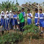 pelatihan_pertanian014