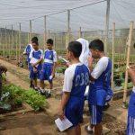pelatihan_pertanian024