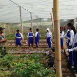 pelatihan_pertanian069