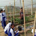 pelatihan_pertanian074
