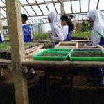 pelatihan_pertanian124