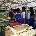 pelatihan_pertanian132