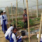 pelatihan_pertanian139